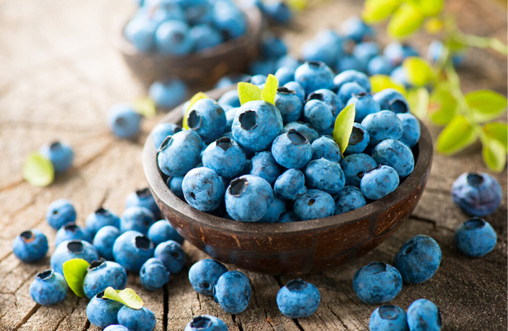 Home Care Services in San Francisco CA: National Blueberry Popsicle Day
